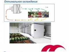 Градирни, шокфростеры, воздухоохладители GUNTNER