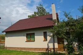 House in the Carpathians (Yasinya)