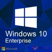 Microsoft Windows 10 Enterprise – one for home and small organizations