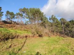 Остров Мадейра (Португалия) Продается земельный участок