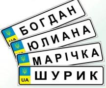 The LIC plate frames car license plates, parts, documents